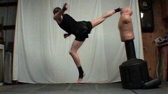 Taekwondo 360 Back Kick Tutorial (Kwonkicker)