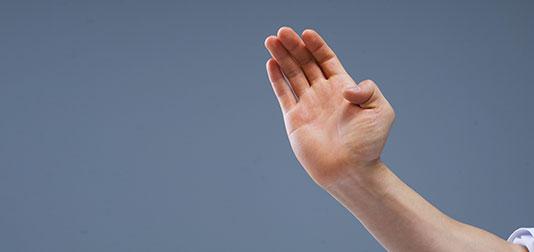 File:Palmheel Hand.jpg
