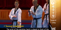 Low Double Knifehand Block