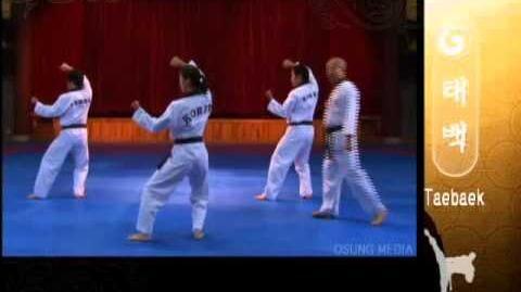 Grand Master Kyu Hyung Lee - WTF Poomsae Taebaek