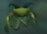 File:Imps.png
