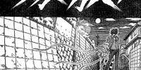 Kikuchi (chapter)