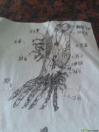 Unknown fan art3
