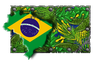 Holiday Paint February 5 2016 brazil