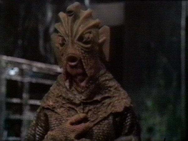 File:Young Silurian.jpg