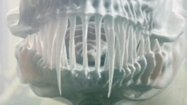 File:Prisoner Zero's teeth.jpg