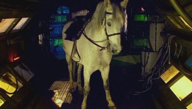 File:Arthur horse.jpg