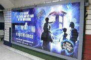 BillboardDWExperience