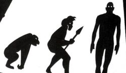 Evolution on Mondas