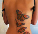 Beginner's Guide to Tattoos