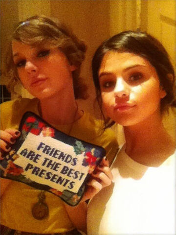 File:Taylor swift selena gomez friendship pillow.jpg