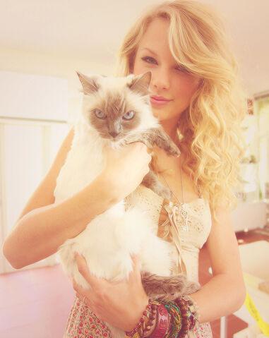 File:Taylor & her cat.jpg