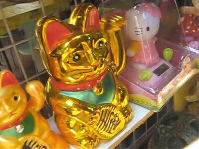 First golden waving cat