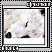 Andrea1-5x75-1