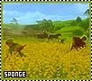 Sponge-valimar