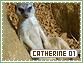 Catherine-elements1