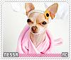 Nessa-animalia