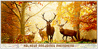 Malheur-phenomena b
