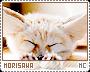 Morisawa-phenomena