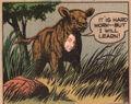 Antista Cow
