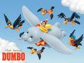 Antista Dumbo