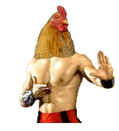 Liu kang chicken