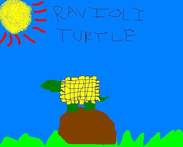 File:Ravioli Turtle.jpg