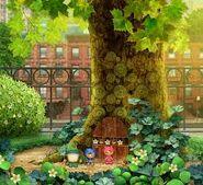 Squirrel's Tree
