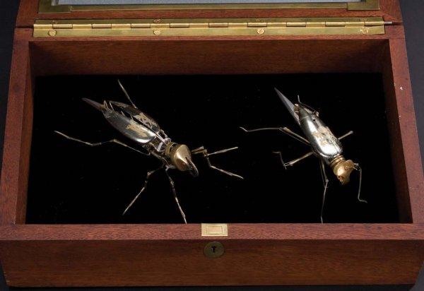 File:Spy-flies2.jpg