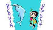 Robin vs dolphin