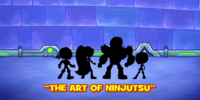 The Art of Ninjutsu/Gallery