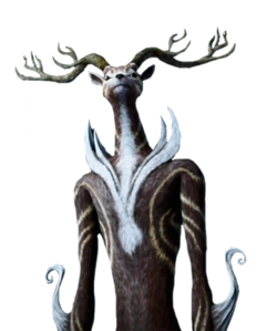 Deer Spirit Profile