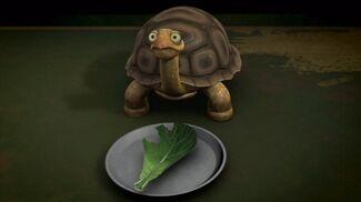 Teenage Mutant Ninja Turtles 2012 Spike