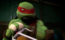 Raphael's Bandanna