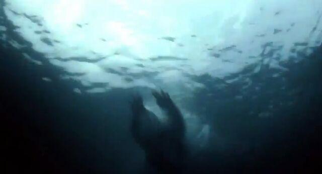 File:Teen beach movie trailer capture 33.jpg