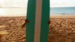 Surf Crazy (343)