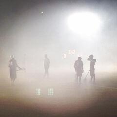 Terrain sous le brouillard