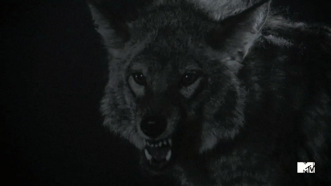 Teen Wolf Season 3 Behind the Scenes 3(b) second Trailer fox.png