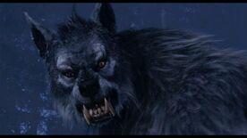 Gabe WolfForm