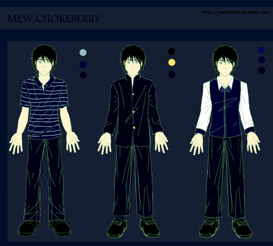 File:100306 Chokeberry Outfit Colored.png