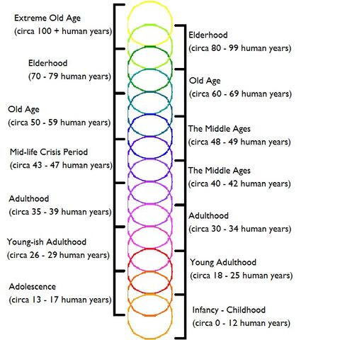 File:In-Depth+Shadowling+Aging+Chart+(Theoreticals+Included).jpg