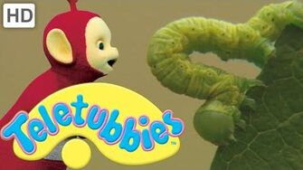 Teletubbies Caterpillars - Full Episode