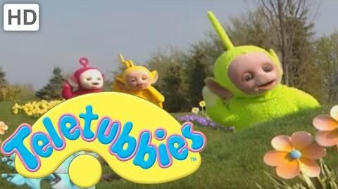 Teletubbies Picking and Sorting - Full Episode
