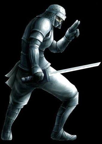 File:Rikimaru armour.jpg