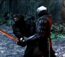 Shida Ninja