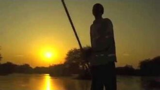 Survivor Togo - Tengaged's Choice