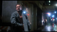 The Terminator 017