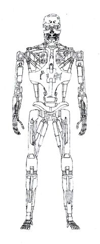 File:T-888 v1 Endoskeleton.jpg