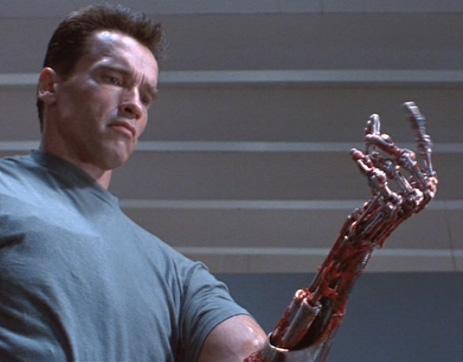 File:Terminator-arm endo.jpg