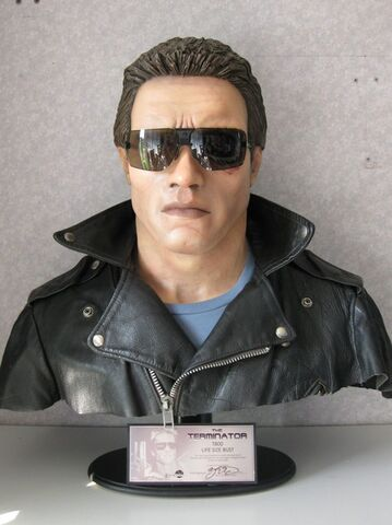 File:Terminator1bust.jpg